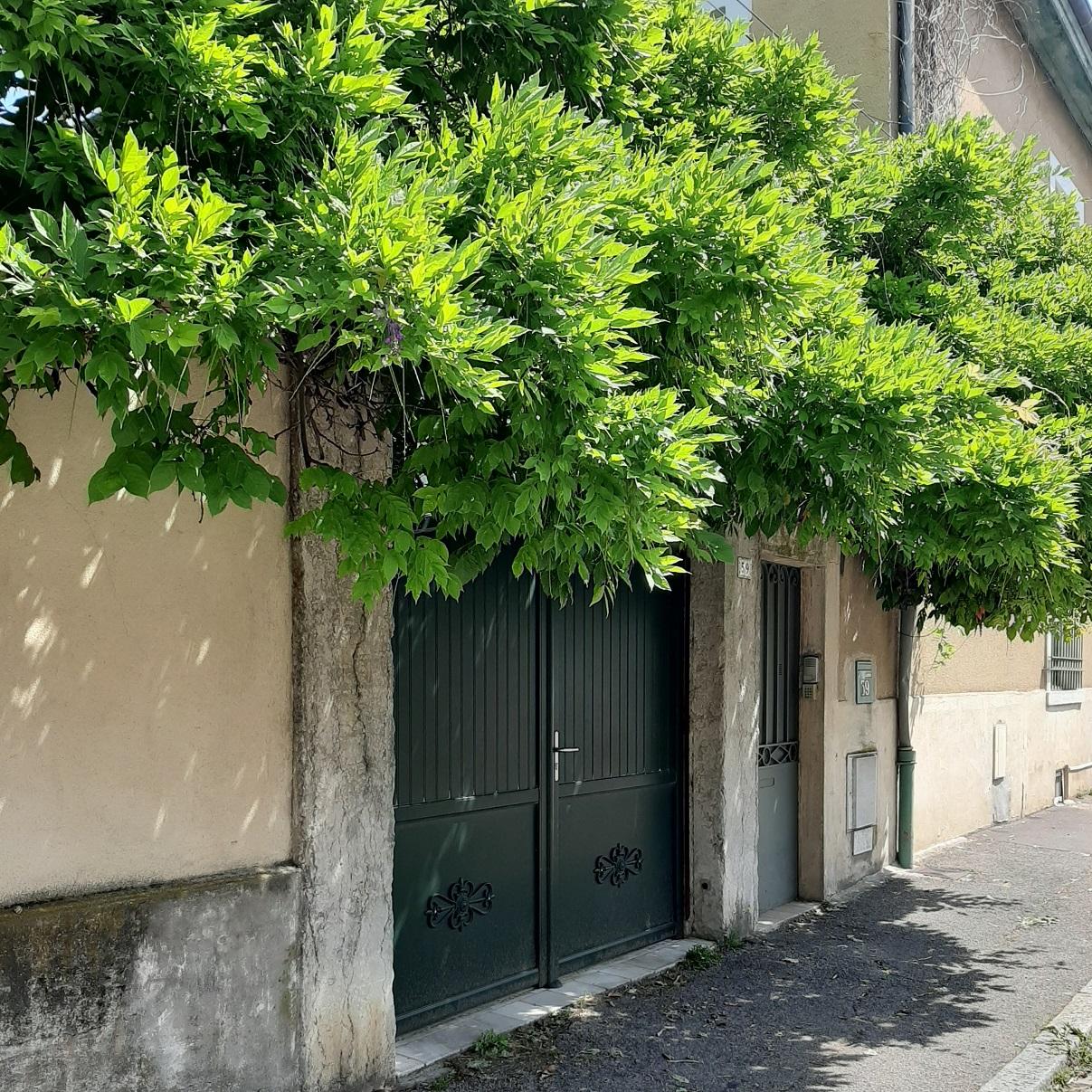 Un joli portail dans le quartier de Montchat, à Lyon