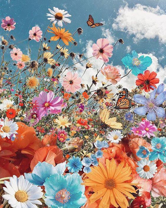 Fleurs et papillons au printemps