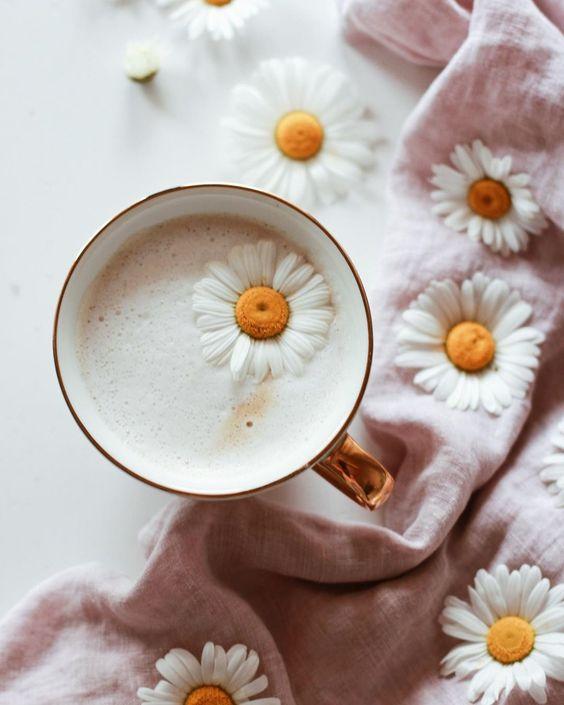 Latte et marguerites de printemps