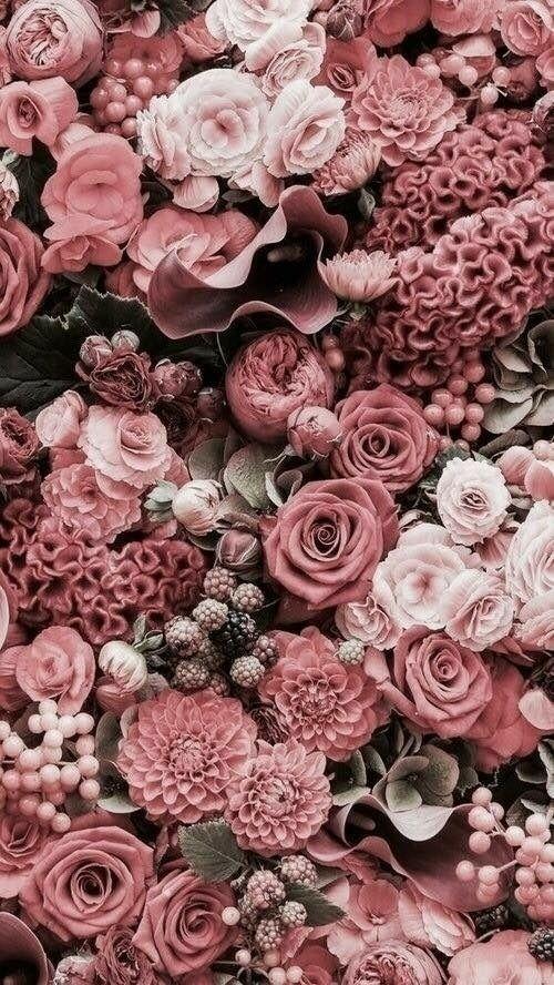 Roses et fleurs de printemps